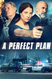 Cinemaindo21 A Perfect Plan